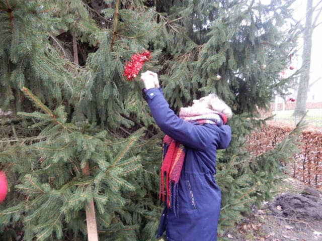 De kerstboom bij de Dorpskerk